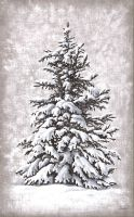 "Toile O "" sapin""-Oliva blue-decoration campagne"